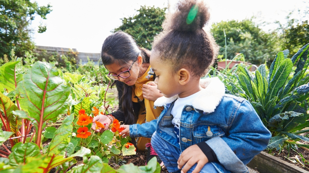 Community gardens contribute to healthy living.