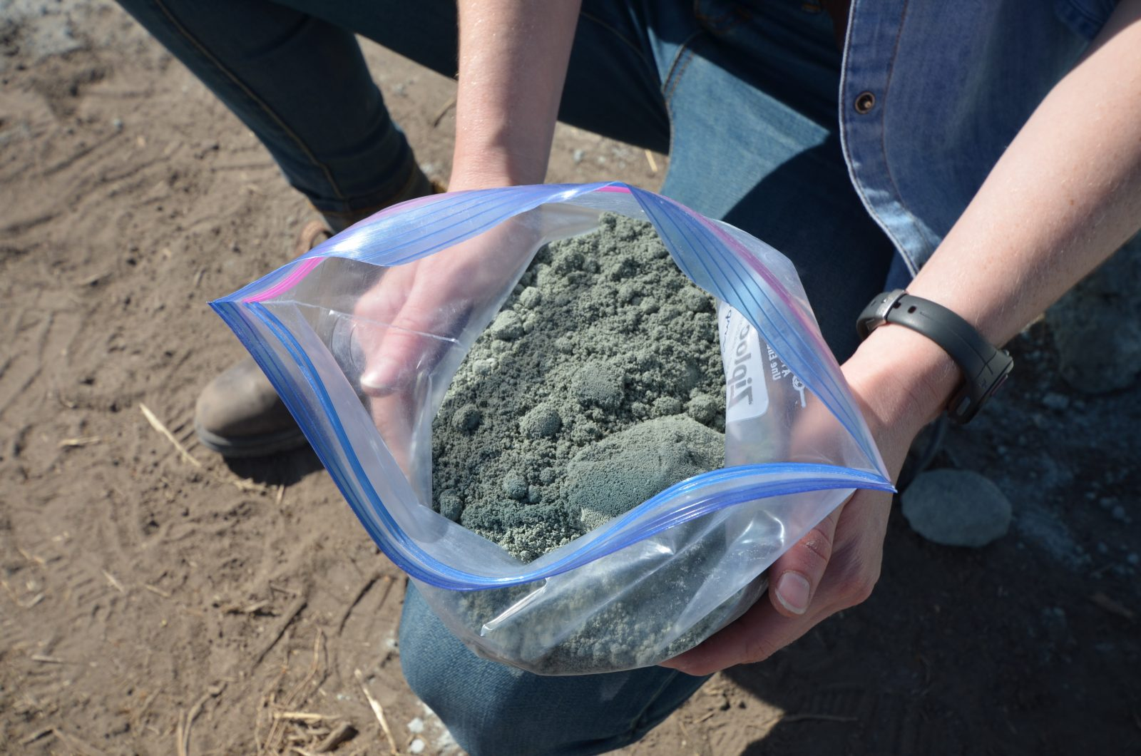 Bag of rock dust held by student