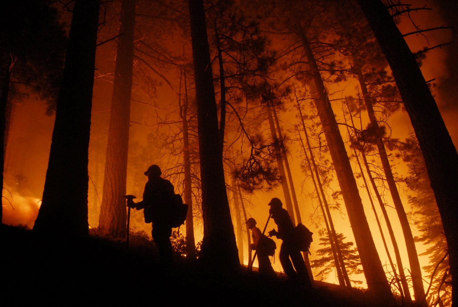 Firefighters watch a prescribed burn in South Lake Tahoe, California