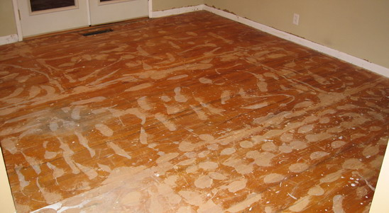 Floor after scraping