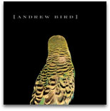Armchair Apocrypha, by Andrew Bird