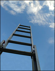 Climbing the ladder. Photo: iStockphoto