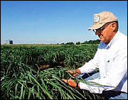 Cellulosic bust? Photo: whitehouse.gov