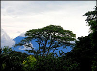 Photo: www.viajar24h.com via Flickr