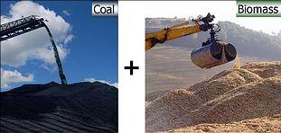 Image Source: European Biomass Industry Association