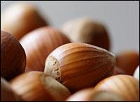 Hazelnuts are filberts too. Photo: Steffen Zahn via Flickr