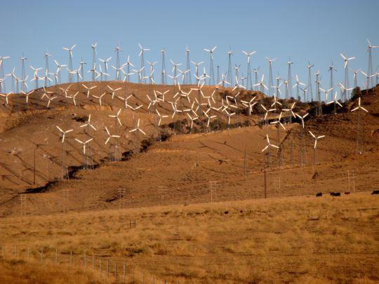 calif. wind farm