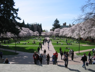 University of Washington.