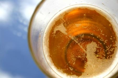 organic beer at obama beer summit