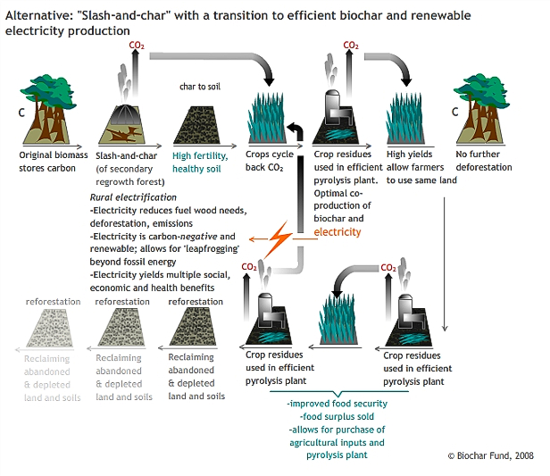 biochar and electricity