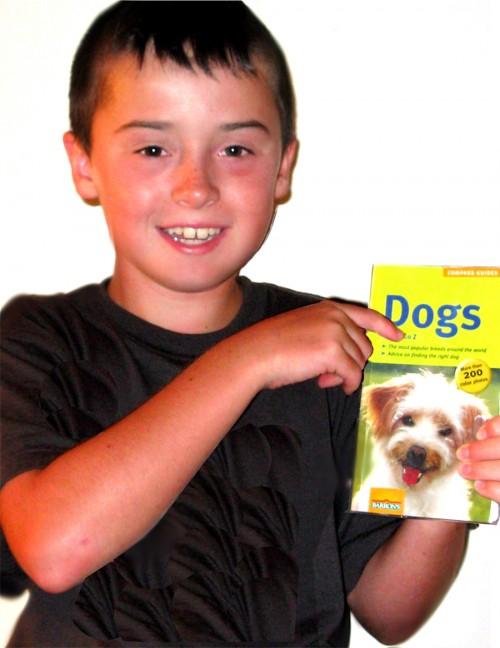 Kuba dog campaign