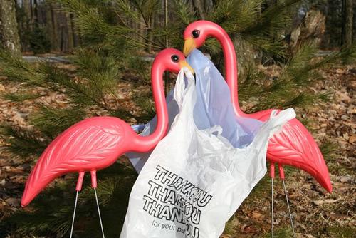 Garden flamingos picking up a plastic bag.