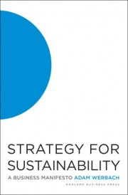 "cover of ""Strategy for Sustainability"""