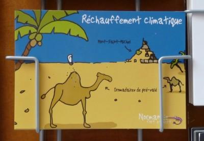 Mont St Michel avec camels