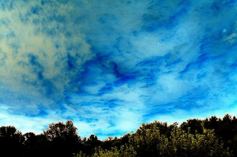 blue and green sky above trees