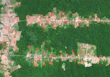 Satellite image of deforestation in the Amazon.