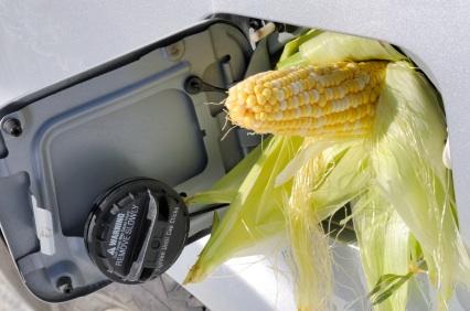 Corn in gas tank.