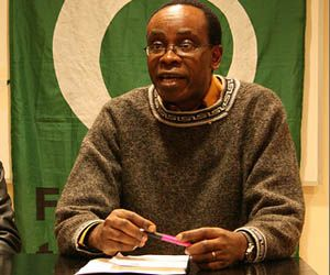 Nnimmo Bassey, chair of Friends of the Earth International