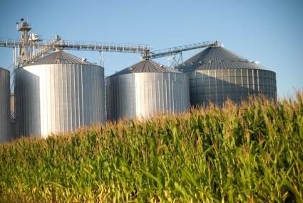 Corn silos