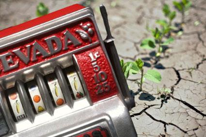 Slot machine in droughty field