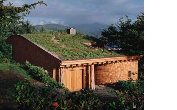 A green roof.