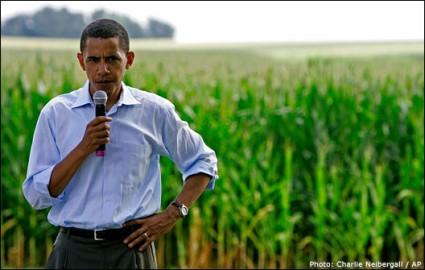 obama/corn