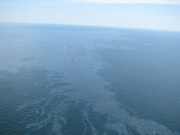 oil spill on Gulf of Mexico