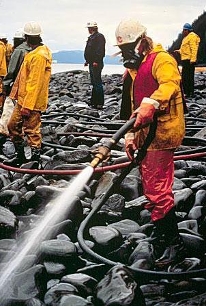 Cleanup efforts from Exxon Valdez