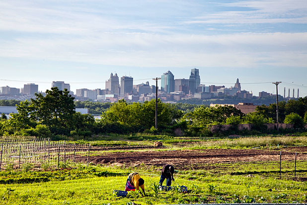 Kansas City Pioneers New Models For Urban Farms