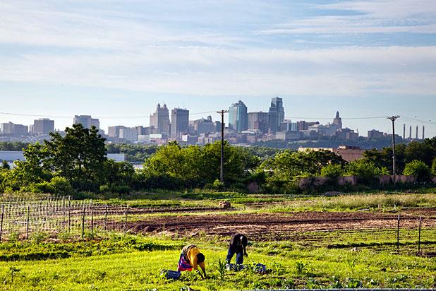 Urban farm and Kansas skyline