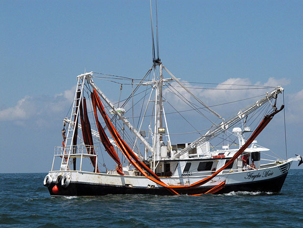 Shrimpboat with oil booms