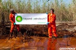 Image (1) oil-spill-bp-sign-marsh-Greenpeace.jpg for post 37416
