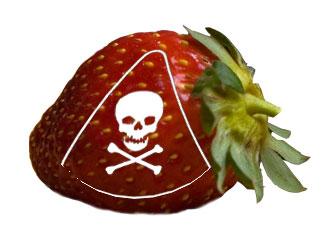 Poison strawberry