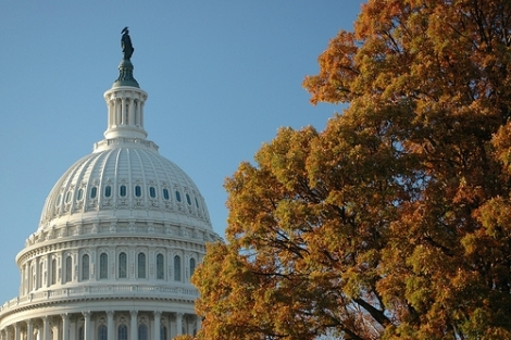 Image (1) us_capitol_tree_flickr_via_Photo_Phiend.jpg for post 37621
