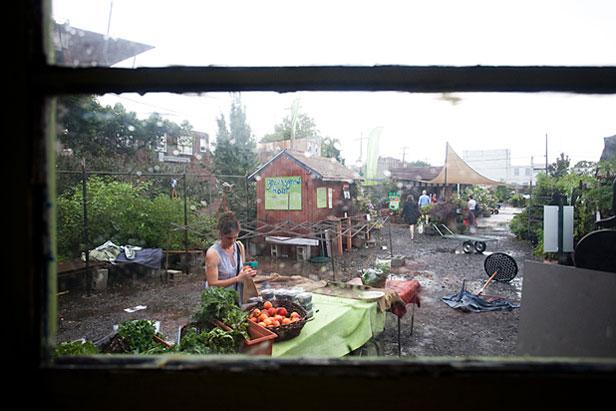 Farm market in the rain