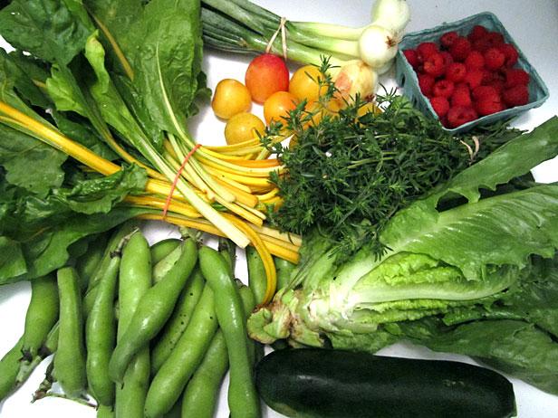 Box 6 of veggies