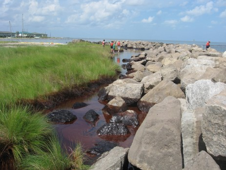 oil on coastline