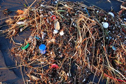 Plastic on a beach.