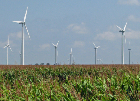 Wind turbines in a field.