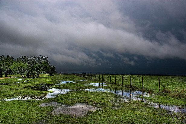 Rainy farm