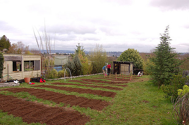 Seattle urban farm