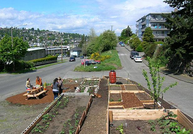 Planting a median