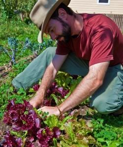 Josh Parkinson, Magic Bean Farm