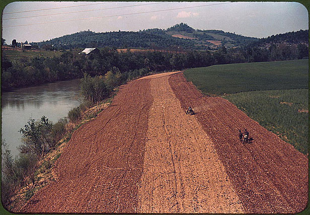 Corn planting by horse plow