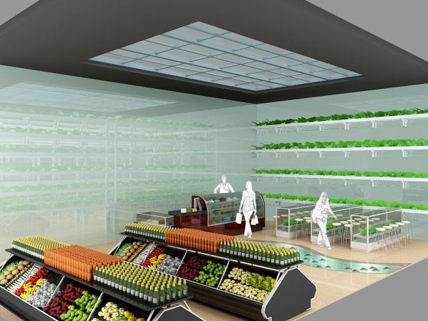 Agropolis store visualization