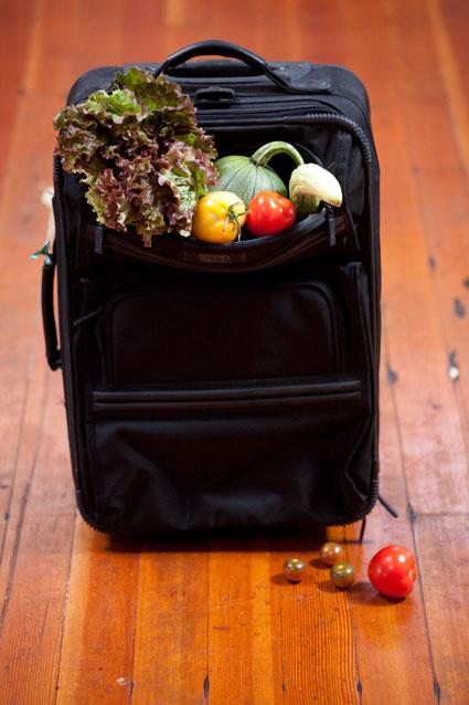Suitcase of veggies