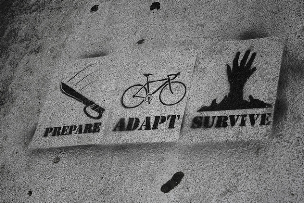 prepare adapt survive bike graffiti