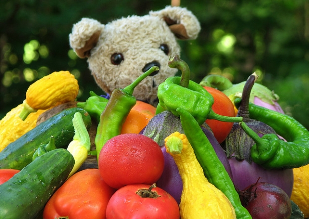 Stuffed puppy with colorful vegetables