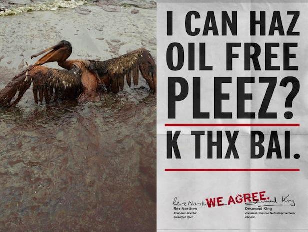 Yes Men lolcats Chevron oiled pelican