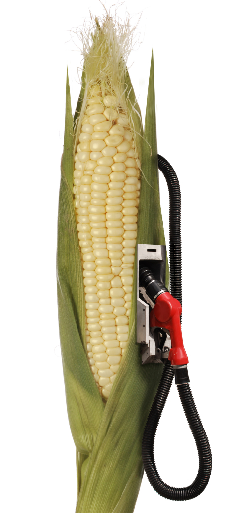 Corn and gas pump